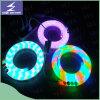 Luz de néon flexível colorida do diodo emissor de luz de 110V 220V