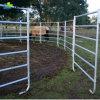 Comitato galvanizzato portatile all'ingrosso all'ingrosso del bestiame