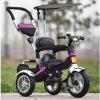 Dreirad intelligentes Trike Ly-W-0101 des neuen Baumuster-2016