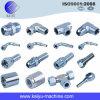 Edelstahl-Rohr-hydraulische Befestigungen