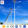 12V 24V 30W, 40W, 50W, 60W, 80W 및 100W DC LED 관제사를 가진 태양 가로등