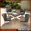 2018の井戸のFurnirの庭の家具は椅子および表とセットした