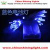 a cor azul do bulbo 40LED de 4m varia luzes transparentes desobstruídas da bateria do fio da cor