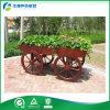 Carro de madera al aire libre de la flor para los usos públicos (FY-006B)