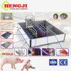 De Multifunctionele het Werpen van Varkens Kratten van uitstekende kwaliteit