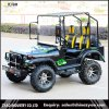 Nieuwe Gemaakte 150cc/200cc/300cc MiniUTV Willys voor Volwassen Elektrisch