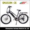 Prachtig Ontworpen Dame Women Electric Bicycle met Lichtgewicht