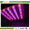 LED Keisue crecer con la luz de espectro para el hogar Granja Vertical