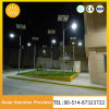 Druckgießende Aluminiumsolarstraßenlaterne-60W LED Energie