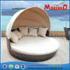 Wicker Rattan Round Daybed with Canopy
