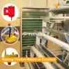 Конструкция дома цыпленка яичка высокого качества для слоев