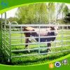 Il bestiame della mucca recinta la rete fissa del bestiame galvanizzata comitati