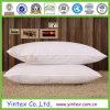 Travesseiro de leito para pacientes adultos com enchimento de poliéster (CE/OEKO-TEX, BV, a SGS)