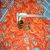 Le poivron rouge congelé par IQF chaud de vente découpe la qualité en tranches