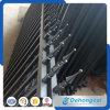 Belle clôture en métal galvanisé tubulaire noir plus fort