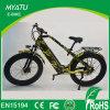 Hola bici eléctrica gorda de Mountian de la potencia con 750W 48V/13ah