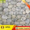 建築材料の残り部屋の床タイルのシェルのタイル(HP03)