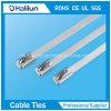 der 4.6mm*680mm Körper-Edelstahl Selbst-Halten Kabelbinder in der Fabrik an