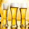 Dernière machine bière soufflé Steins Forme d'oeufs tasse en verre de bière pour les grossistes