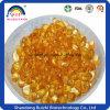 De Olie Zachte Gel500 Mg/Cap X 40caps/Bottle, 500 Mg/Cap X 10caps/Box van de Spore van Lucidum van Ganoderma