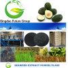&Powder del fiocco dell'estratto di /Kelp/Seaweed dell'alga del fertilizzante della versione rapida