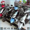 卸し売りスクーター強力なモーターバイク電気都市自転車
