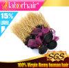 도매 브라질 Ombre 머리 연장, 100% 사람의 모발