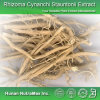 Выдержка 100% естественная Cynanchum Glaucescens (коэффициент: 4:1 ~20: 1)