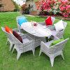 PEの藤/柳細工の屋外の庭の食事/レストランの表および椅子はZ565をセットした