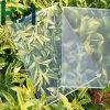 Il vetro solare rivestito/basso di antiriflessione ultra chiara riveste di ferro vetro Tempered di vetro/solare