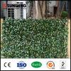 5-10 يزرع سنون [ورّنتلي] بلاستيك خارجيّ اصطناعيّة جدار لأنّ حديقة