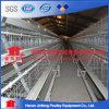 La meilleure vente de cage de couche de poulet de batterie de qualité pour la ferme du Pakistan