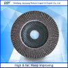 Alumina van het zirconiumdioxyde de Schurende Schijf van de Klep voor Roestvrij staal