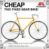 700c 안녕 Ten Many Color Road Bike (ADS-7073S)