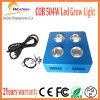 Super Power 504W Chloroba2 LED luz de crescer com o espectro completo
