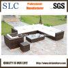 Sofa extérieur de rotin, sofa en osier de rotin, sofa en plastique de jardin (SC-B6018)