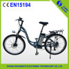Shuangye Lithuim Battery Stadt Bicycle mit 250W Motor