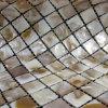 網の川はまだらにする貝のモザイク(BFW-NB-SQ20)を