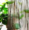 El panel de la resina de Eco de la decoración con la planta natural adentro