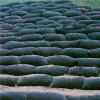 Bolsos de desecación Unwoven de la tela del geotextil para el tratamiento de aguas residuales