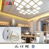 Projecteur imperméable à l'eau de corde de lumière de chaîne de caractères du TDC DEL pour l'éclairage d'intérieur