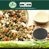 Kingeta riduce il fertilizzante composto basato carbonio NPK 28-6-6 del fertilizzante di diffusione di malattia
