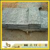 Natural Split G612 Green Granite Mushroom Stone Tile for Wall