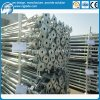 Encofrado de la construcción apuntalamientos de acero para la construcción de prop.
