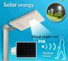 15W Integrated Solar DEL Lamp/Lights (éclairage d'Outdoor pour la rue/jardin/cour)
