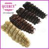 熱い販売の深い波の人間の織り方のブラジルの毛の織り方の黒カラー