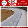 Pavimentando Road Geo Textile/Geotextile/Nonwoven Geotextile/Nonwoven Needle Punched Geotextile em Sale