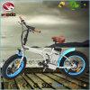 電気浜のスクーターを折るEn15194 250Wの油圧脂肪質のタイヤEbike