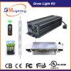 dobro de 630W CMH terminados crescem o dispositivo elétrico claro para a luz do jardim