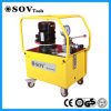 실린더를 위한 두 배 또는 단 하나 임시 전기 유압 펌프